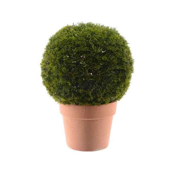 boule conif re dans pot en terre cuite plusieurs tailles disponibles. Black Bedroom Furniture Sets. Home Design Ideas