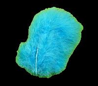 Plumes turquoises x20
