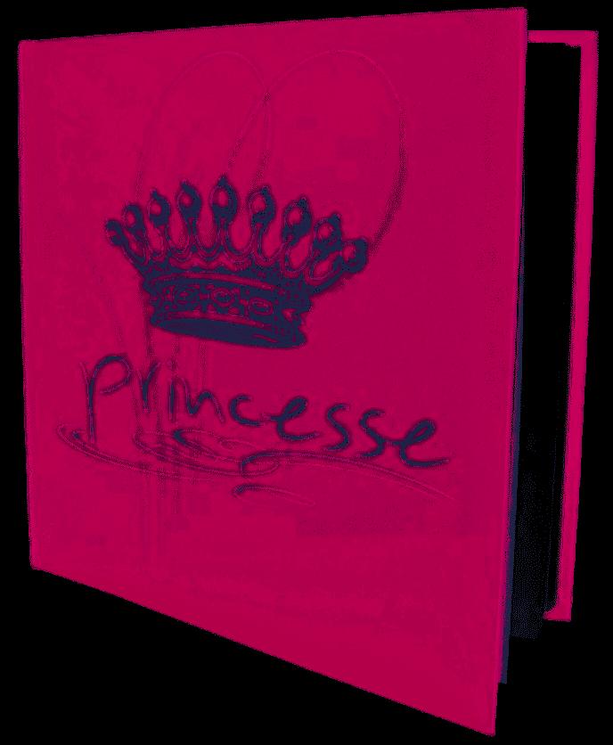 Livre d'or Princesses