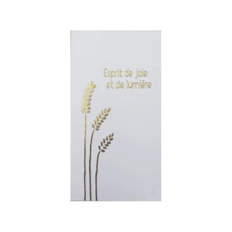 x10 cartes communion esprit de joie et de lumière
