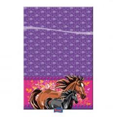 Nappe anniversaire - chevaux