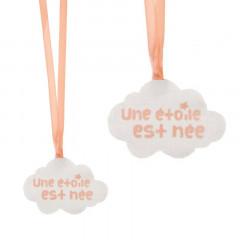 4x Sachet Dragées Etoile Est Née - Corail
