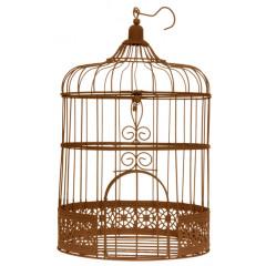 Tirelire cage rouillée