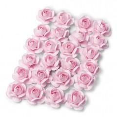 24 roses roses
