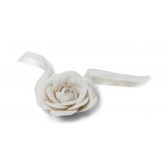 Rose lin et dentelle sur ruban