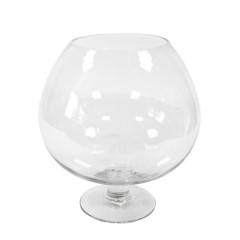Coupe Cognac en verre