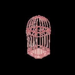 Cage carte de voeux fushia