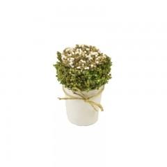 Compo fleurs blanches séchées dans pot rond