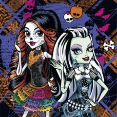 Lot 20 serviettes anniversaire Monster High