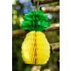 Ananas alvéolé 30 cm