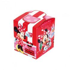 Pochette cadeau - Minnie