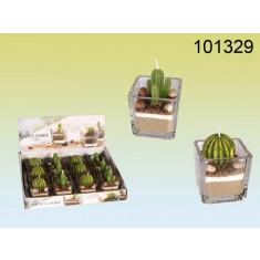 Bougie cactus dans mini vase en verre