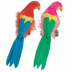 Perroquet en plumes - 30 cm