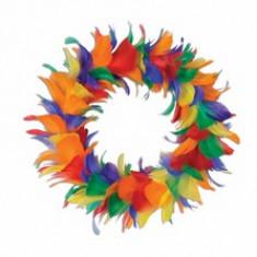 Couronne de plumes arc-en-ciel – 20 cm