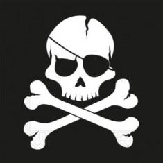 20 Serviettes Pirate tête de mort - 33 x 33 cm