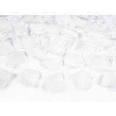 100 pétales de rose - blanc