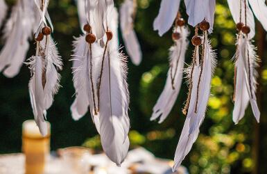 theme deco plumes