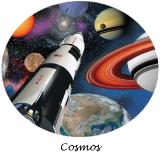 decoration anniversaire cosmos