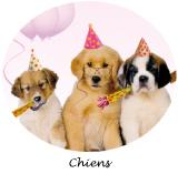 decoration anniversaire chiens