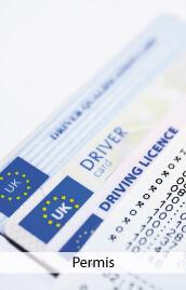 permis de conduire rigolo
