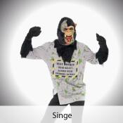 deguisement singe pas cher