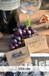theme viticole