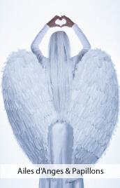 accessoires deguisements ailes anges papillons