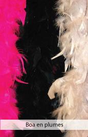 accessoires deguisements boa plumes