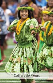 accessoires deguisements colliers fleurs hawaii